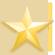 gold-star1